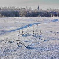 Зимний день :: Валерий Талашов