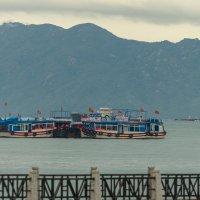 Вьетнам :: Жанна Мальцева