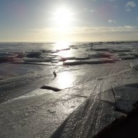 Зарисовка с Финского залива :: Юрий