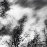 буря :: Виталий Исаев
