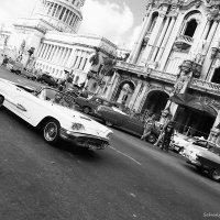 Havana 1.4 :: Arman S