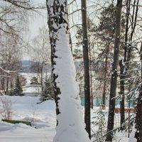 После вьюги :: Андрей Стафеев