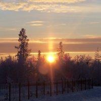 Winter :: Юлия Красноперова