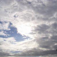 весенние небо :: Ирина Красникова-Дашкова