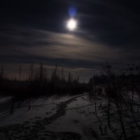 Ночь и тишина... :: Volchara 77