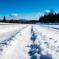 Сибирские дороги :: Sergey Oslopov
