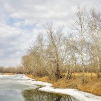 Весна на протока :: юрий Амосов