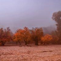 Осень,-природы каприз :: Павел