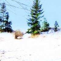 Последнее дыхание зимы :: Вячеслав K..