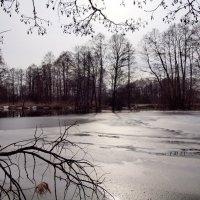 Последний лед. :: Андрей Зайцев