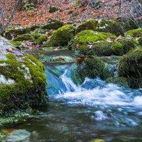 горная речка :: Sergey Bagach