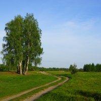 Весна :: Михаил Корнев