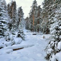 Зима не сдается :: vladimir
