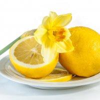 Лимоны. :: Ирина Токарева