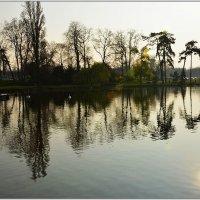 Весна. Франция :: Svetlana Plasentsiia