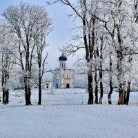 Храм Покрова на Нерли. XII в. :: Анатолий Борисов