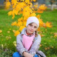 Золотая осень :: Светлана Шаповалова