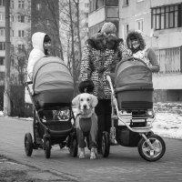 Давай фоткай, я готов :: Василий Либко