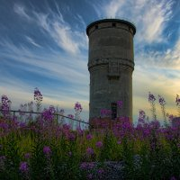 Водонапорная башня :: Николай Емелин