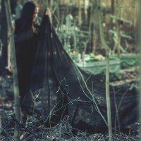 Deep wild :: Nina Zhafirova