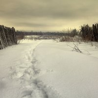 Зимняя, грустная с тропинкой... :: Александр Никитинский