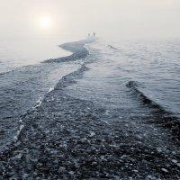 Дорога к солнцу :: Валерий Талашов