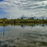 Утром на озере :: Сергей Сухумский