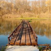 мостик :: Диана С