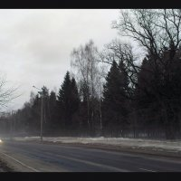 Дорога. :: Анна Кравченко