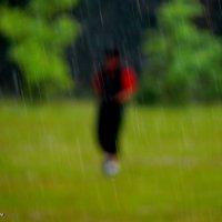 Дождь. :: Анатолий Борисов