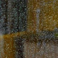 дождливый день :: Михаил *******