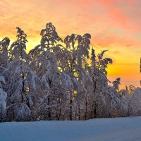 Тиха декабрьская ночь(полярная)... :: Александр Кокоулин
