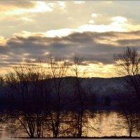 Утро на реке :: galina tihonova