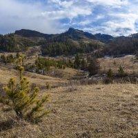 Солнечный март в горах :: Евгений Герасименко
