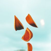 adventure grapefruit 4 :: Сергей Бабичев