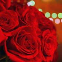 Розы :: Александр Е