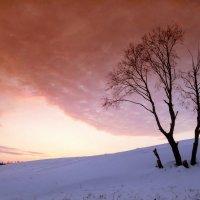 Закат в снегах :: Валерий Талашов
