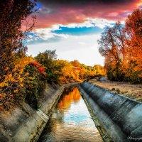 Осень.... :: Мисак Каладжян
