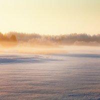 Утро в марте... :: Александр Никитинский