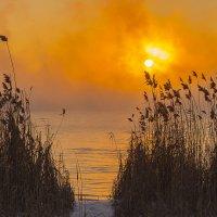 Зимний туманный закат :: Юрий Клишин