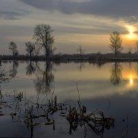 Рассвет на реке :: Людмила Лопатченко