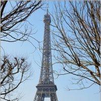Весна в Париже :: Svetlana Plasentsiia