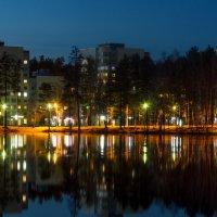 Лесной пруд ночью. :: Сергей Екимов