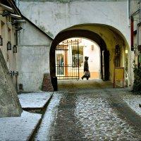 Прогулка по Старому городу :: Виктор (victor-afinsky)