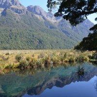 Mirror Lake :: Raya Z
