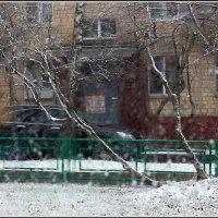 Москва. Начало вчерашнего снегопада. :: Михаил Розенберг