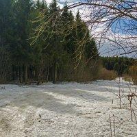 Весенний снегопад :: Юрий Митенёв