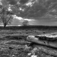 плещеево озеро #2 :: Елена Протасова