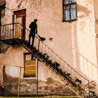 А у нас во дворе... :: Александр Рамус