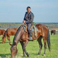 Вологодский ковбой :: Валерий Талашов